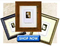 Fast Ship Picture Frames