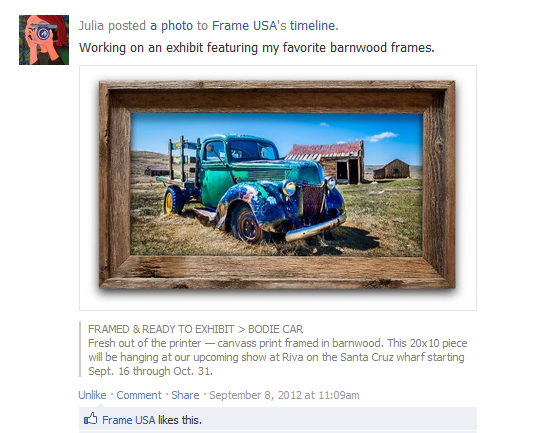 Our Frames In Use – Customer Image Submissions From Facebook