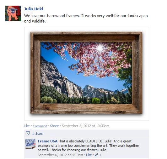 Landscape Photography Frame