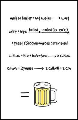 Beer-Science-11x17