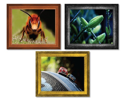 Verona Picture Frame -- Macro Photography