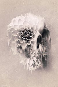 Decay Skull